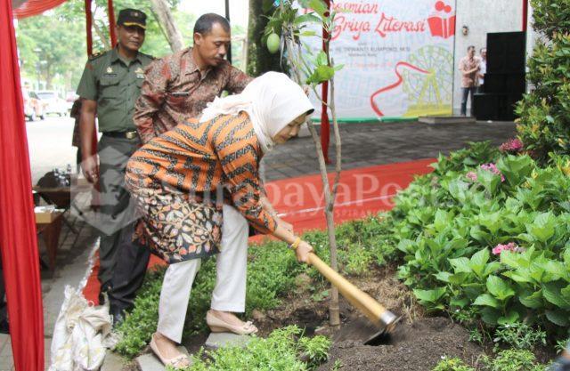 Wali Kota Batu Hj Dewanti Rumpoko saat menanam pohon mangga di taman Guest House Griya Literasi milik Pemkot Batu.