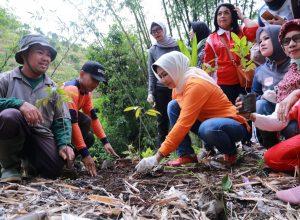 Wali Kota Dewanti Rumpoko saat menanam pohon di kawasan Sumber Sungai Brantas.