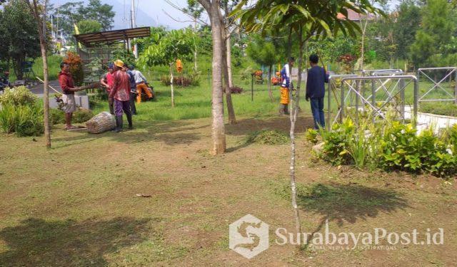 DLH Kota Batu menurunkan Tim Peramu Taman untuk membenahi Taman Hutan di Temas yang dikeluhkan warga.