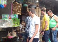 Wisatawan asing asal Australia kala berkunjung ke Pasar Burung Mendit di Kota Malang, Jatim.